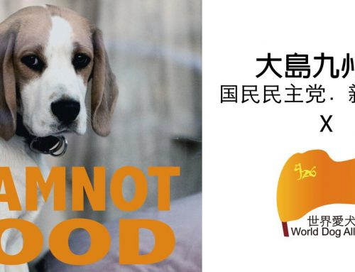 Japan: Ban Dog Meat Parliamentary event on 15-Nov-2018