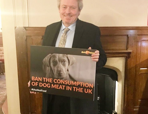 Conservative MP supports a dog meat ban in UK!