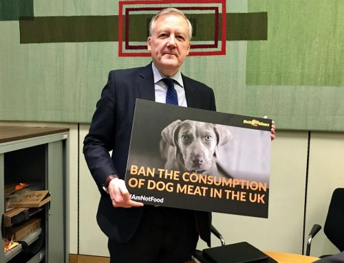 Labour MP supports a dog meat ban in UK!